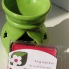 Feng Shui-Fire Soy Candle Tarts