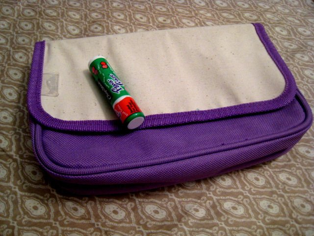 PURPLE MAKEUP POUCH CASE VELCRO CLOSE HEALTH BEAUTY PRODUCTS WOMEN'S ACCESSORY SANFORD RUBBERMAID