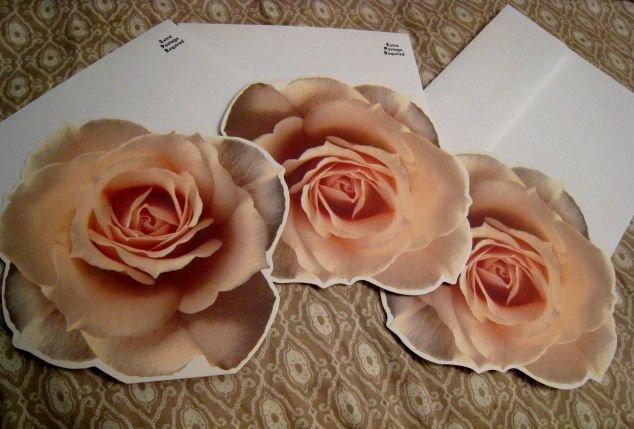 blank FLOWER CARD scrapbooking HALLMARK GIFT FLOWERS HOME GARDEN - PEACH ROSE + FREE CONFETTI