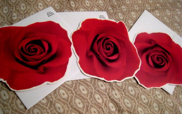 blank FLOWER CARD scrapbooking HALLMARK GIFT FLOWERS HOME GARDEN - red ROSE + FREE CONFETTI