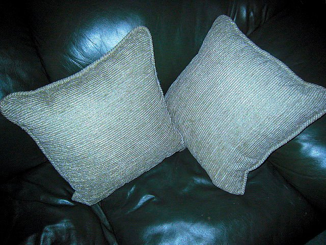 lot 2 pillow pillows sofa home decor brand new olefin made in USA green