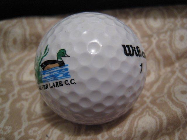 SILVER LAKE WILSON 1 - COLLECTOR'S GOLF BALL SPORTS MEMORABILIA DECORATIVE COLLECTIBLE HOME HOBBY