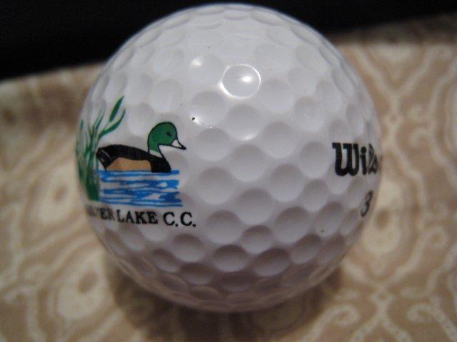 SILVER LAKE WILSON 3 - COLLECTOR'S GOLF BALL SPORTS MEMORABILIA DECORATIVE COLLECTIBLE HOME HOBBY