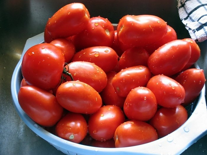100 ROMA TOMATO SEEDS VEGETABLE GARDEN HOME FAMILY FUN