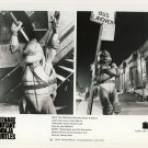 Leonardo & Raphael Promo Press Photo - Ninja Turtles - TMNT