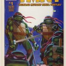 Teenage Mutant Ninja Turtles Vol. 4 #1 (2nd Print) Comic Book - TMNT