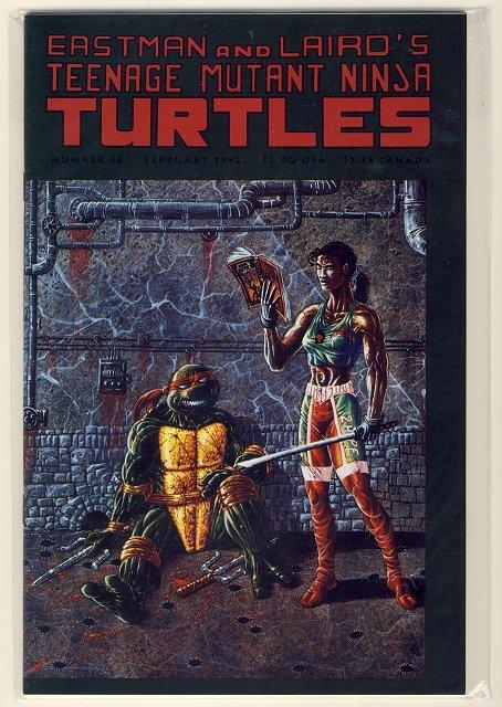 Teenage Mutant Ninja Turtles Vol. 1 #44 Comic Book - TMNT