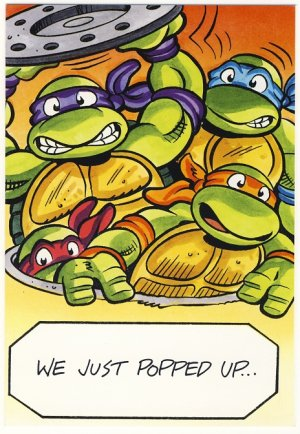 Teenage Mutant Ninja Turtles Birthday Greeting Card -  TMNT