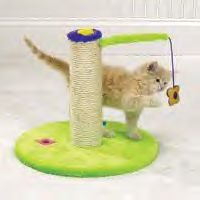 Zanies Flower Power Scratch Post