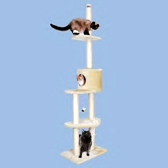 Meow Town Floor To Ceiling Kitty Sky Tower