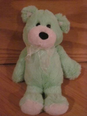 Burton + Burton Green Teddy Bear Plush Toy Black Eyes & Nose Item #982026
