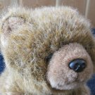 Ty Classic Plush Brown Bear named Forest from 1997