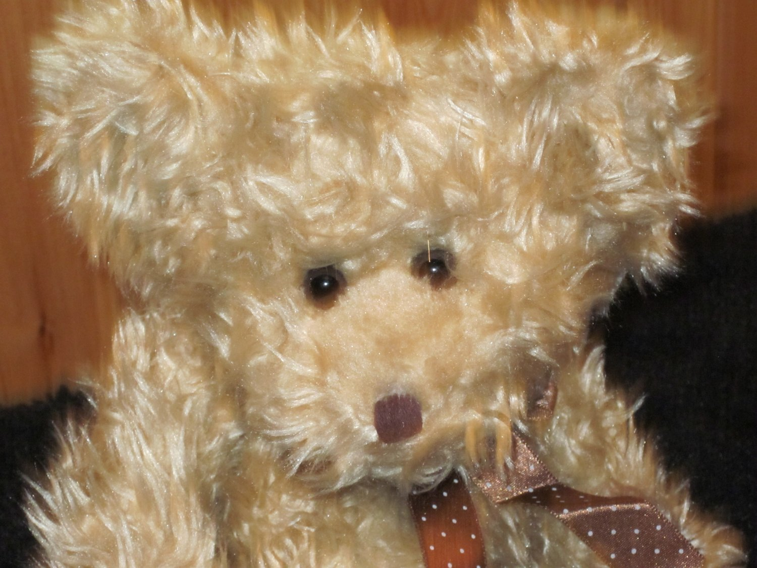 Russ Berrie Tan long haired Teddy Bear with Brown polka dot ribbon #3283