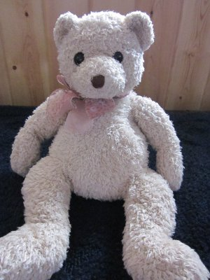 TY Classic Teddy Bear Named Whistles Retired 2004