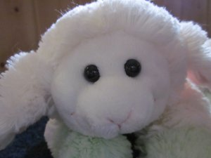 Fiesta Plush white lamb with green feet Floppy Style
