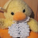Prestige Toy Co for Little Suzy's Zoo Plush Duck or Chick Musical Crib Toy