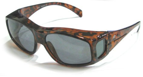The Beak Sunglasses Tortoise Frames Birdz  Eyewear