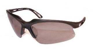 The Sunbird Sunglasses Black Frames Birdz  Eyewear