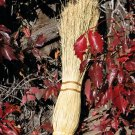 Ceremonial Witch's Broom Ritual Besom Natural Color