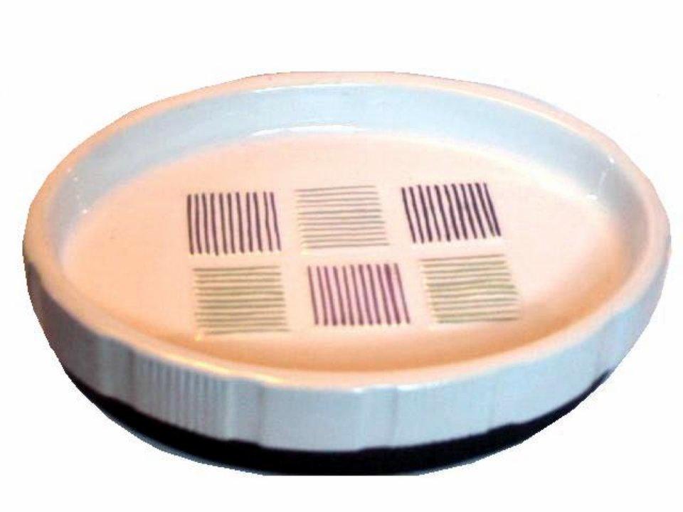 Checker Stripe Ceramic Soap Dish
