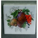 Fruit Themed Coasters Set
