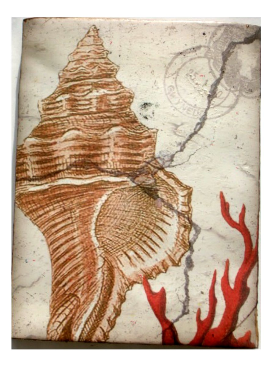 Seashell and coral resin wall plaque beach wall decor for Resin wall art