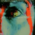 Dario Argento horror movie retrospective flyer Japan [PM-100f]