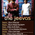 THE JEEVAS tour flyer Japan 2003 [PM-100f]