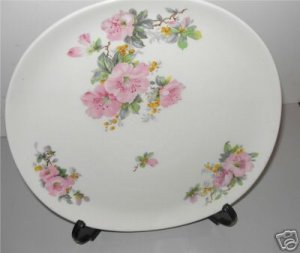 Iva-Lure Crooksville Dinner Plate J-T Crazing   M1