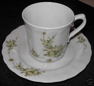 Eschenbach Bavaria Germany Cup and Saucer      N1