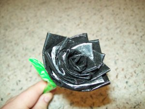 Short-Stemmed Black Rose