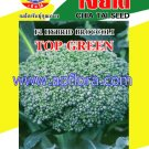 Apichaya Flora Vegetable seeds Broccoli-Top Green