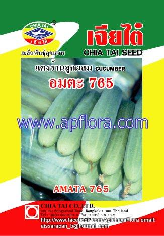Apichaya Flora Vegetable seeds Cucumber-Amta 765