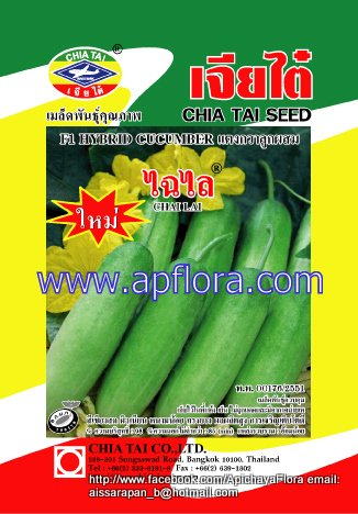 Apichaya Flora Vegetable seeds Cucumber-Chailai