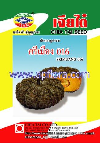 Apichaya Flora Vegetable seeds Pumpkin-Srimuang 16