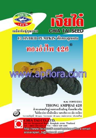 Apichaya Flora Vegetable seeds Pumpkin-Thong am pai426