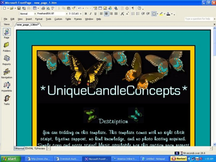 Butterfly Beauty Animal Template