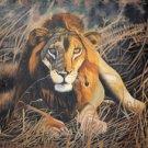 Tarangire Lion Oil on Canvas