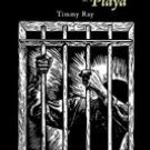 The Life and Death of a Playa - Author: Timothy Sawyer