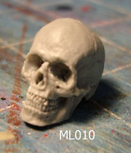 ML010