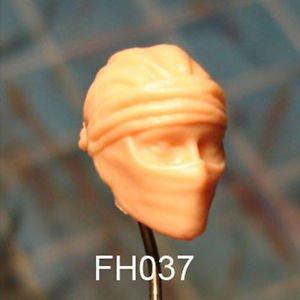 FH037
