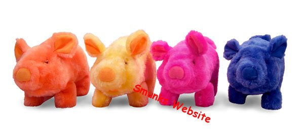 Mr Bacon the Racing Pig Toy school fast fun Race NEW