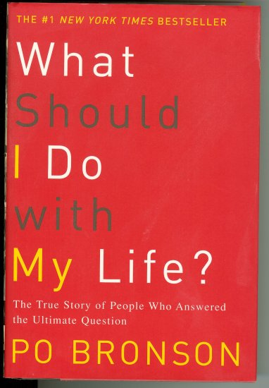What Should I Do With My Life by Po Bronson (2003)