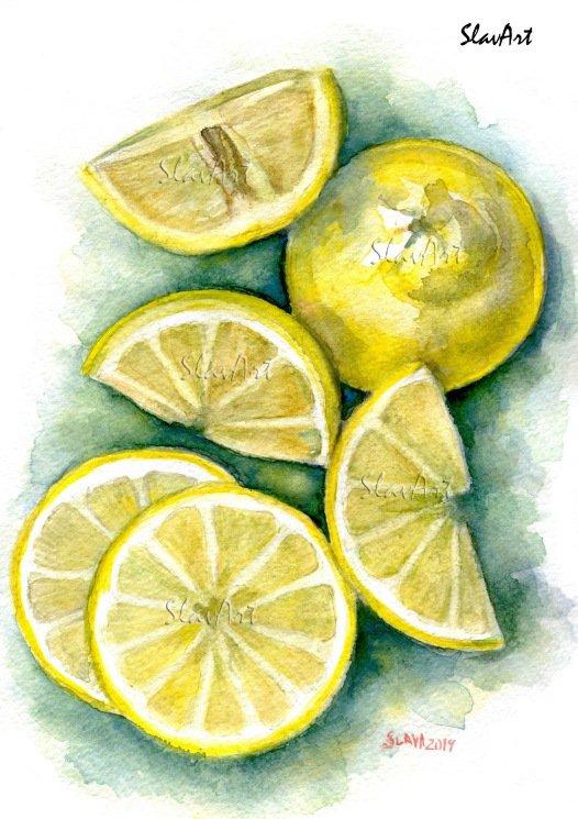 Stil Life Cut Lemons Print Watercolor Painting Fine Art Home Decor Realistic Kitchen art
