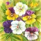Colourful pansies Watercolor print Fine art Floral painting Spring garden flowers Home decor