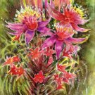 Exotic Flowers Print Watercolor Floral Painting Realistic Summer Flowers Home Art Gift