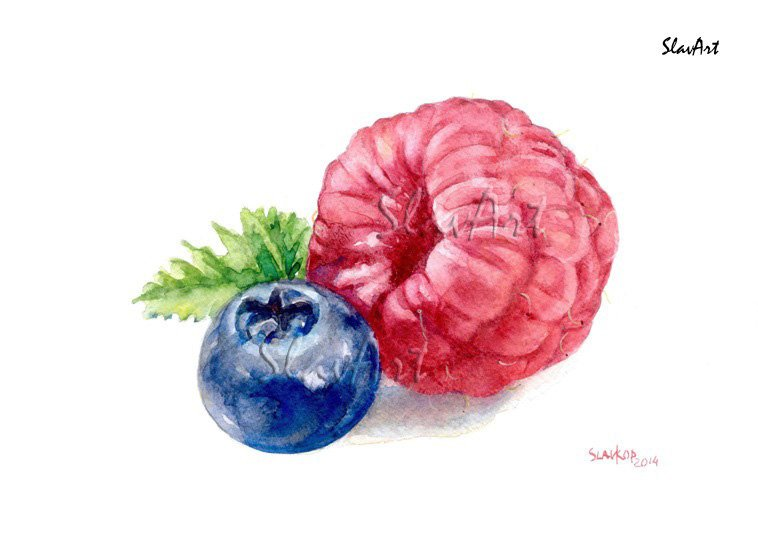 Fruit Art Painting of Raspberry and Blueberry Still Life Food Prin Watercolor Fine Art Home Decor t