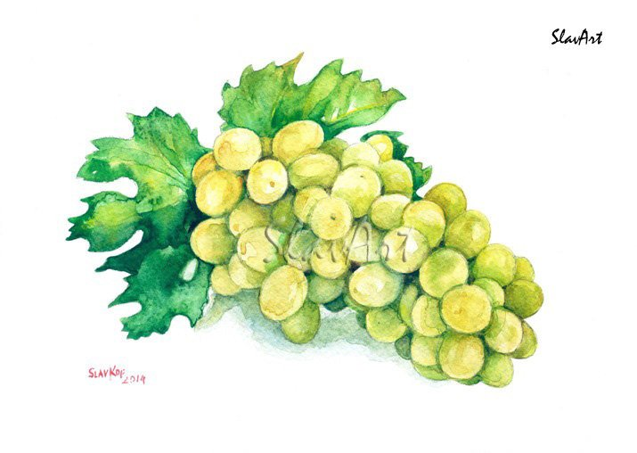 Fruit Art Painting of Grapes Food Still Life Print Watercolor Fine Art Home Decor Realistic Kitchen
