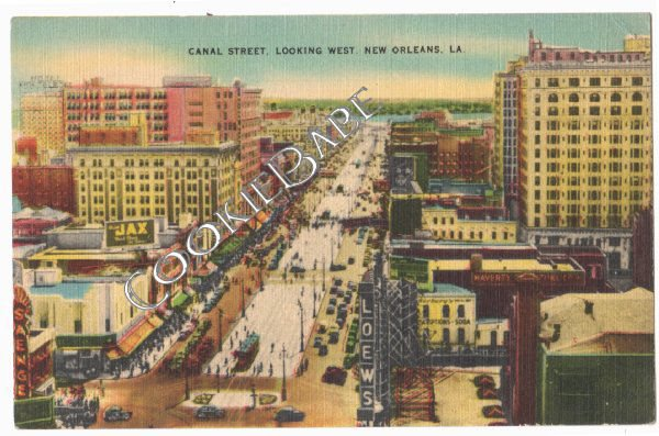 VTG NEW ORLEANS, LA ~ Old Canal Street View POSTCARD