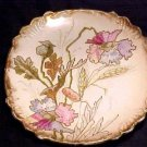 ANTIQUE GERMAN ENAMELED FAIENCE PLATE, BONN c.1887-1920, gf3